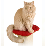 #4006 Perch for the Ultimate Scratching Post by SmartCat®